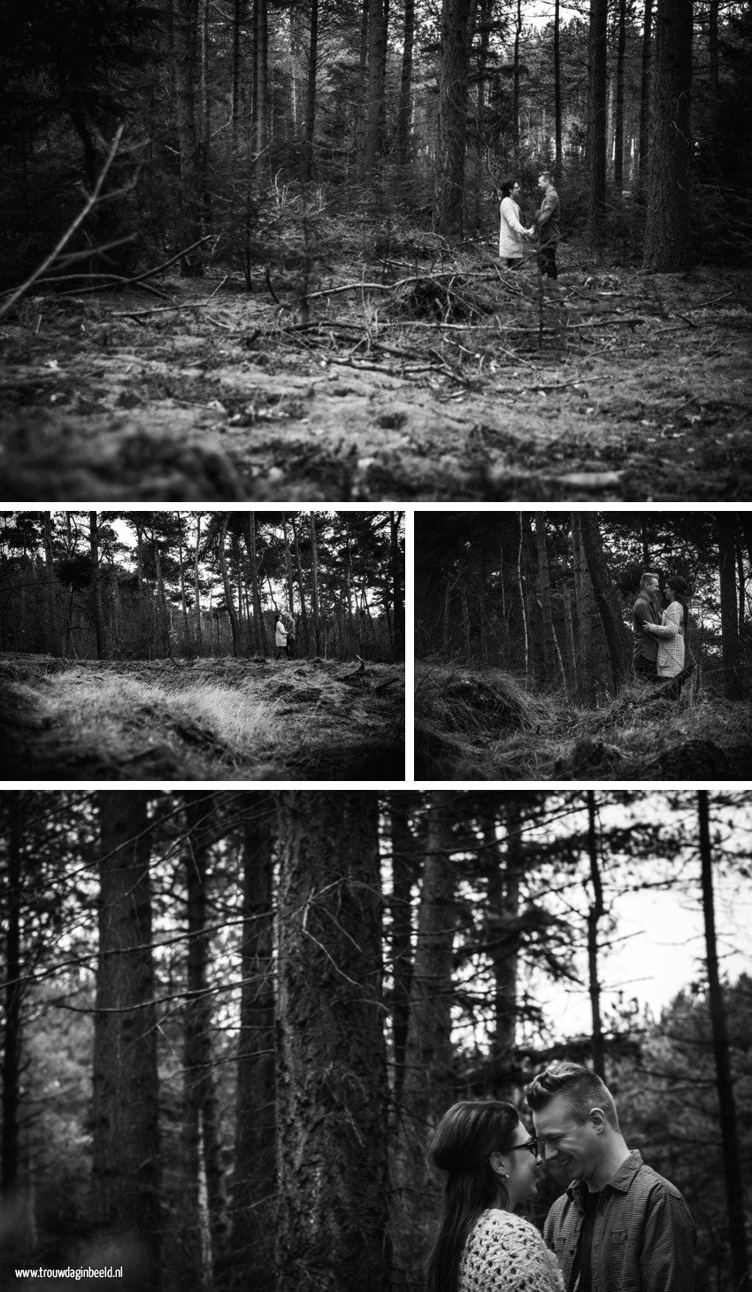 Loveshoot natuurgebied Geldrop