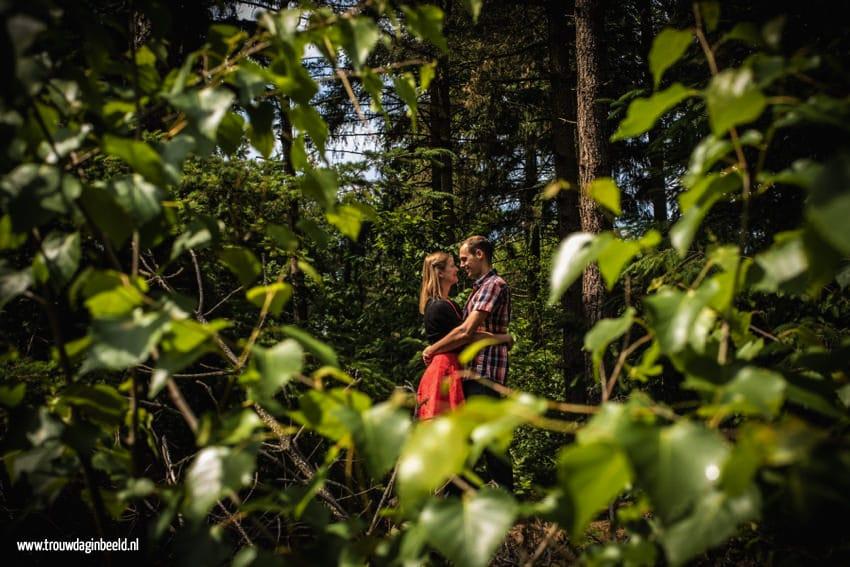Loveshoot Mierlose bossen