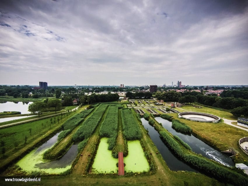 Bruidsfotografie natuurgebied Moerenburg Tilburg