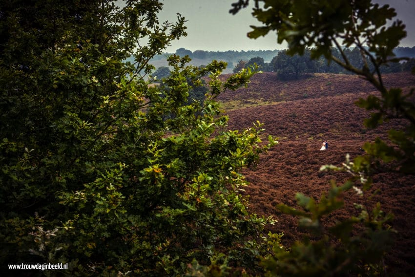 Trouwreportage Nationaal Park Veluwezoom