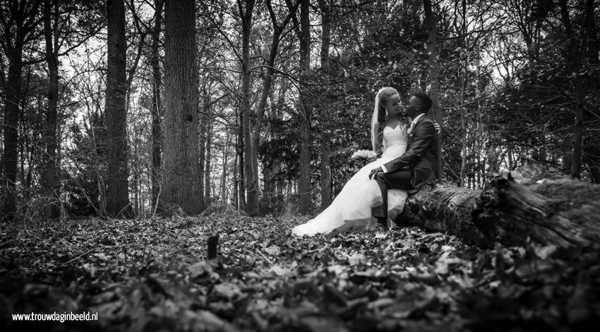 Fotograaf bruiloft Warande Helmond