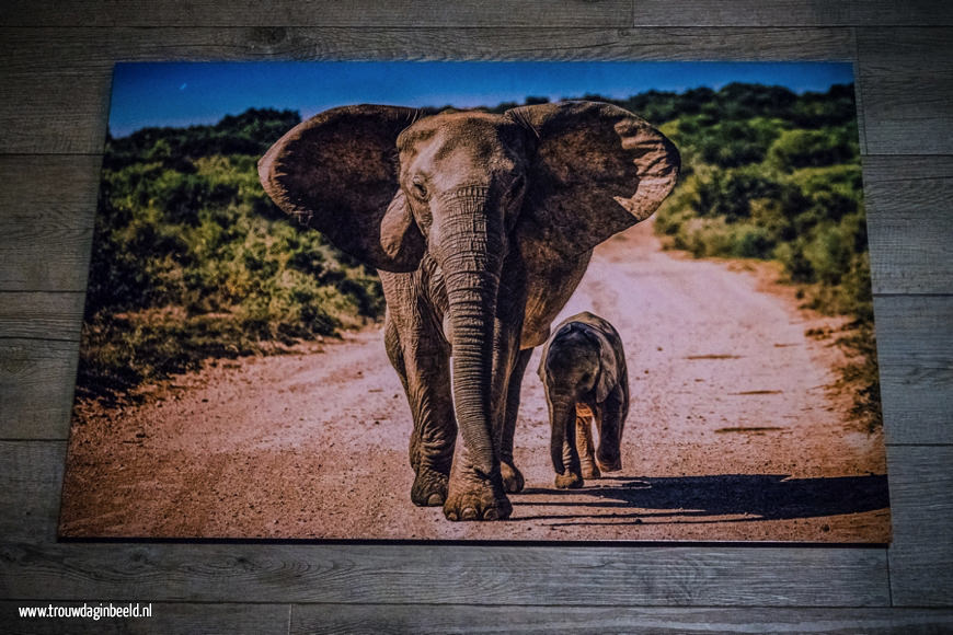 HD Metal print steelprint