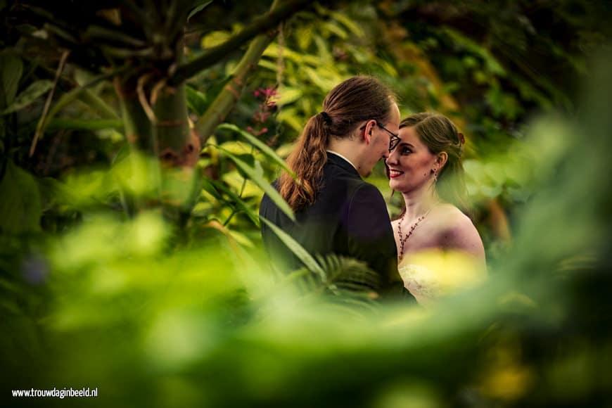 Fotograaf bruiloft Diergaarde Blijdorp Rotterdam